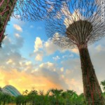 solar-powered supertrees