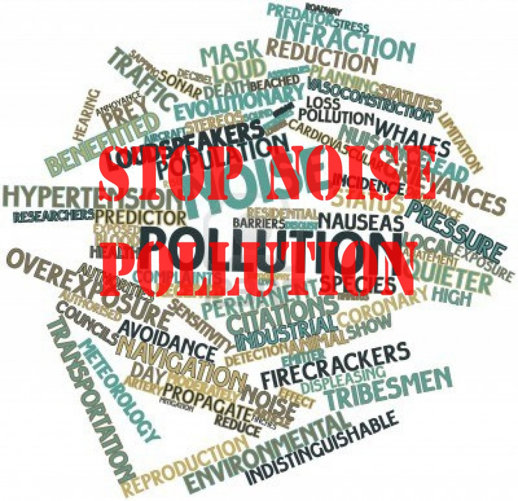 noise-pollution_educatesansar