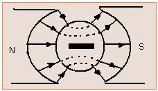 radial-field